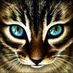 XXnightshade16XX's avatar