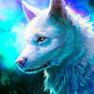 Droymyth's avatar