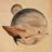 Eruedraith.GCN's avatar
