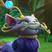 Rochi'Octavija's avatar