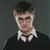 Я Гарри Джеймс Поттер