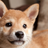 DaGranny's avatar