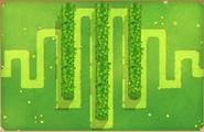 Hedge Beta