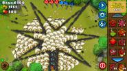 Ninja optimised firework
