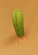 Cactus 3