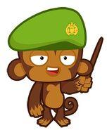 Army Monkey