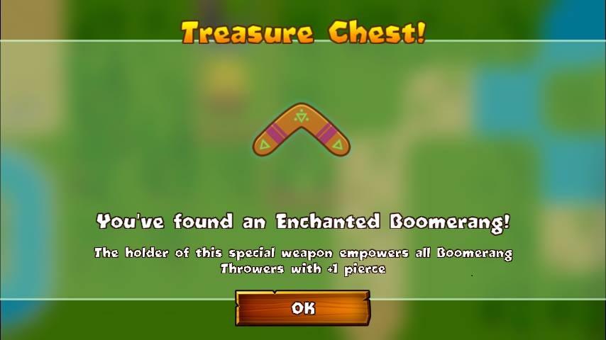 Enchanted Boomerang
