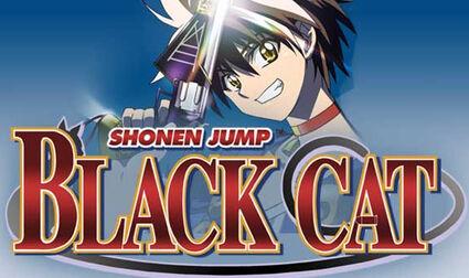 BlackCat Main Page.jpg