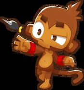 002-Dartmonkey