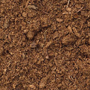 Peat Soil | Geology Fundamentals | FANDOM Powered By Wikia