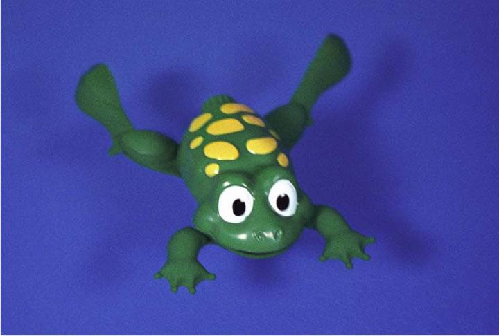 Amphibious Frog