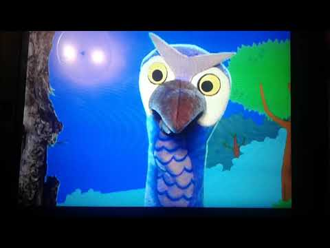 Otto the Owl