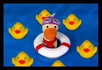 Quacker the Duck (Baby Neptune- Duckie Bath Segment).jpg