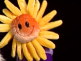 You Are My Sunshine Singing Flower
