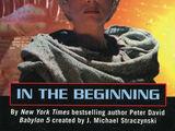 In the Beginning (Novelization)