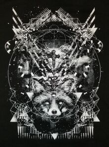 Fox Universe front.jpg