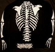 Bone type 2 back.jpg