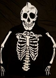 Bone type 2 front.jpg