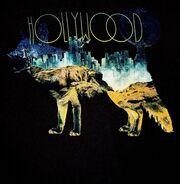 Hollywood Fox front.jpg