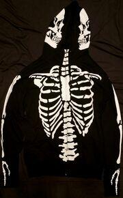 Bone front.jpg