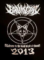 Fox god back.jpg