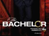 The Bachelor (Season 19)