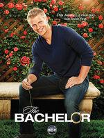 Bachelor17Poster.jpg