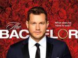 The Bachelor (Season 23)