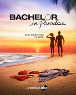 Bachelor in Paradise 7 Poster