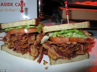 Bacon Lettuce And Tomato B L T Bacon Wiki Fandom