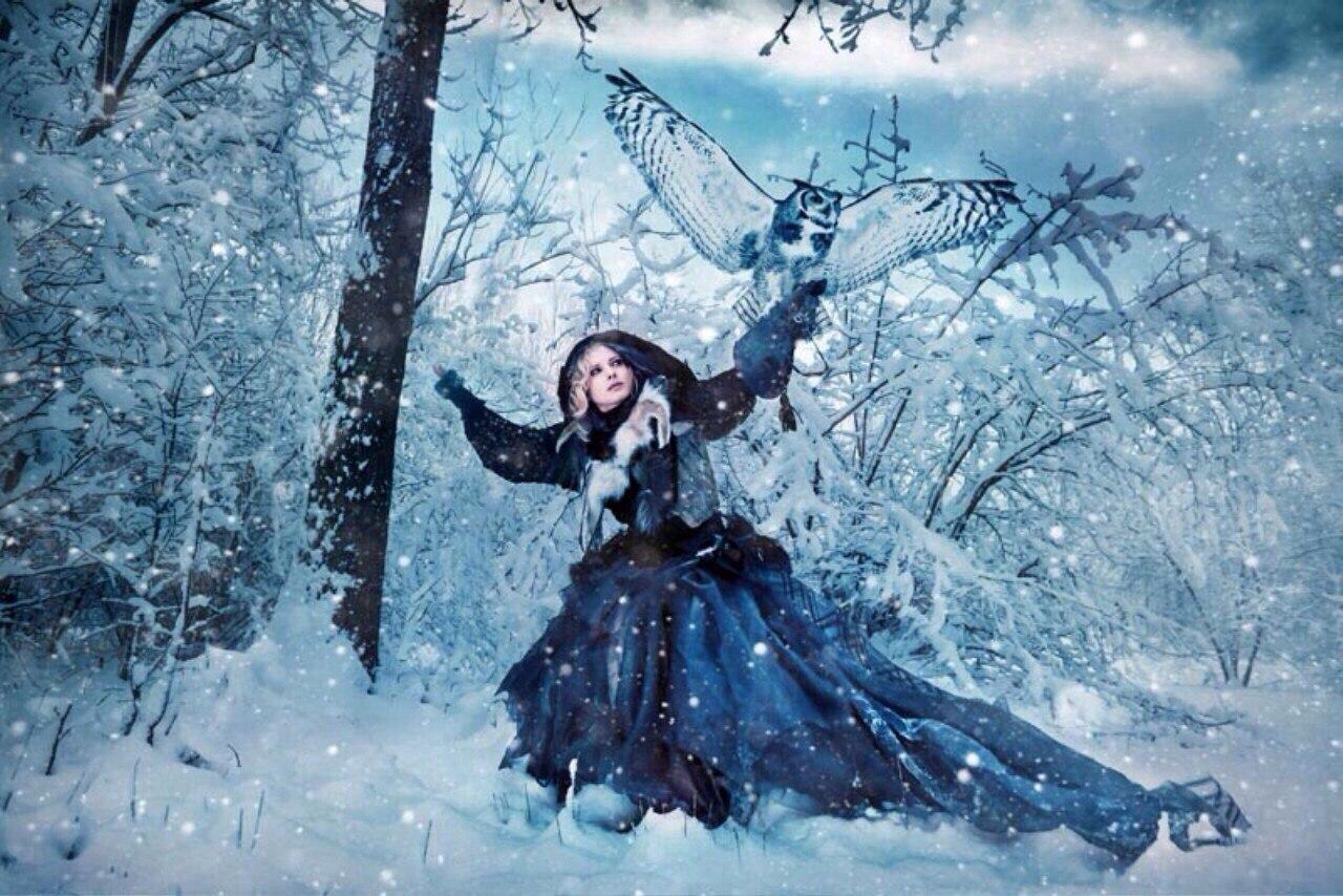 лес зимой и сказка фэнтези фото включается