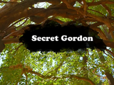 Secret Gordon