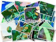 Hawktor collage