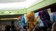 My Little Pony Live Show