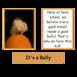 Pri bully-sharedassets3.assets-251