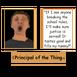 Pri principle-sharedassets3.assets-308