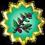 Belladonna Flowers