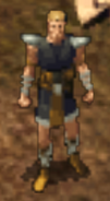 Priest of Helm NPC BG2EE