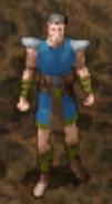 Druid druid grove challenge messenger NPC BG2EE