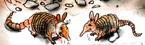 Armadillos in Crash Twinsanity