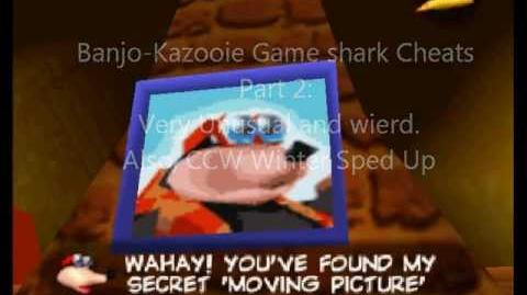 Banjo-Kazooie Codes Part 2 Very Unusal and CCW Winter
