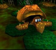 250px-Banjo-Kazooie Bubble Gloop Swamp Tanktup-1
