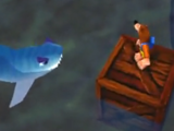 Snacker the Shark
