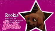 Meet Stacie's Puppy, Rookie! (A Puppy Chase)