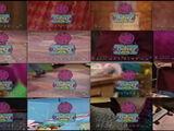 Barney's Screeners VHS