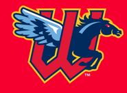 Wichita Wind Surge logo