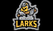 BismarckLarks