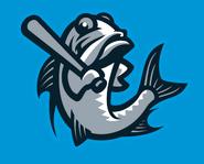 Tampa Tarpons logo