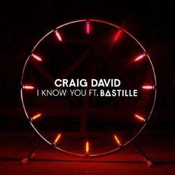 BastilleSingles-IKnowYou.jpg