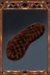 Charred Meat.png
